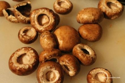 mushbol_cc_mushrooms